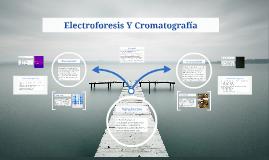 Electroforesis Y Cromatografía
