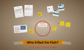 Who Killed the Fish?