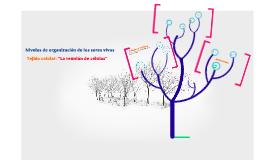 organización de los seres vivos: el tejido celular