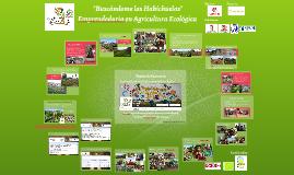 Proyecto Buscándome las Habichuelas