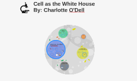 Cell as the White House
