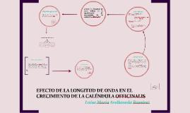 Copy of EFECTO DE LA LONGITUD DE ONDA EN EL CRECIMIENTO DE LA CALEND