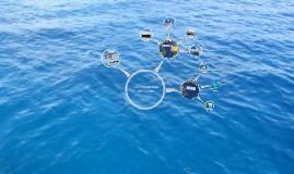 Les ressources de l'océan