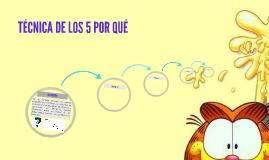 TÉCNICA DE LOS 5 POR QUÉ