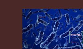 MICROBIOLOGIA  ASOCIADA A IAAS
