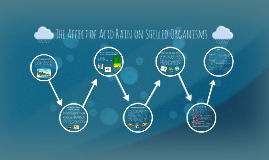 The Affect of Acid Rain on Shelled Organisms