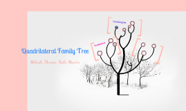 quadrilateral family tree