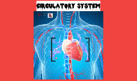 Cardio System sp