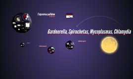 Gardnerella, Spirochetas, Mycoplasmas
