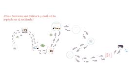 ¿Cómo funciona una salinera y cuál es su impacto en el ambiente?