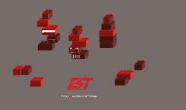 EST Vision