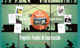 Proyecto Paneles de Construccion