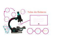 Copy of tubo de rubens