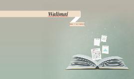 Walimai: Literary Breakdown