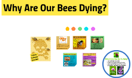 Cause of Colony Collapse Disorder