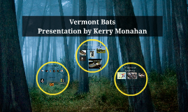 UCS Bat Prezi Day 2