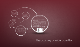 The Journey of a Carbon Atom (2.06)