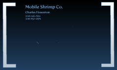 Mobile Shrimp Co.
