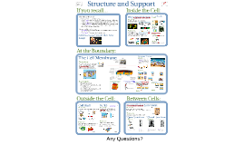 04a)AP Bio- Matter 3:  Structure & Support