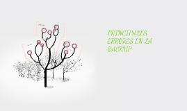 Copy of PRINCIPALES ERRORES EN LA BACKUP