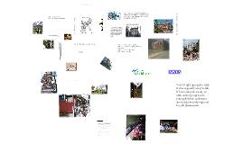 History Benchmark Q1