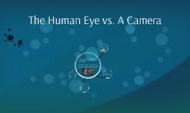 The Human Eye vs. A Digital Camera