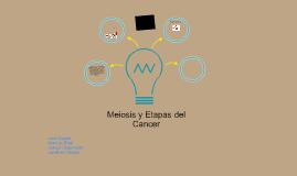 Meiosis y etapas del cancer