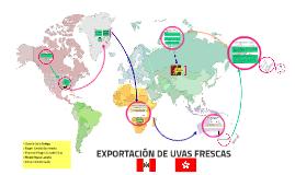 EXPORTACIÓN DE UVAS FRESCAS