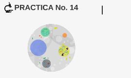 PRACTICA No. 14
