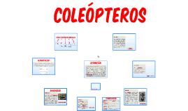 COLEOPTEROS2