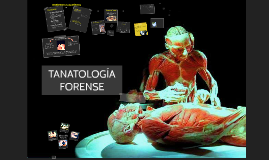 Copy of  Tanatologia
