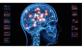 Filosofia e Ciência Cognitiva