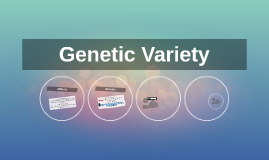 Genetic Variety