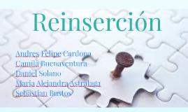REINSERCIÓN