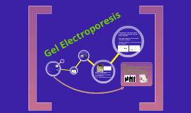 Copy of Gel Electrophoresis