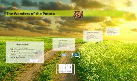 The Wonders of the Potato