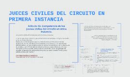 Copy of JUECES CIVILES DEL CIRCUITO EN PRIMERA INSTANCIA