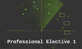 Professional Elective 1