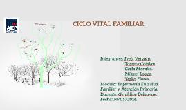 Copy of Familia como Plataforma de lanzamiento