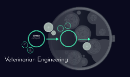 Veterinarian Engineering