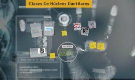 Copy of Clases De Nucleos Dactilares