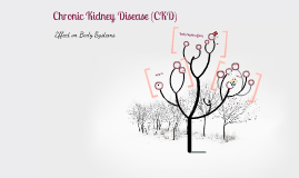 CKD Effect on Body Systems