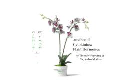 Auxin And Cytokinins