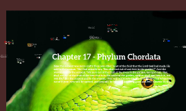 Chapter 17 - Phylum Cordata