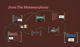 Metamamorphosis