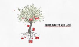 Copy of RAKAMLARIN EVRENSEL TARİHİ