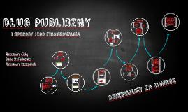Dlug_pubiczny_v3 (1)