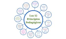 Copy of los 12 Principios Pedagogicos