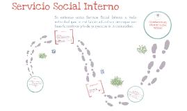 Servicio Social Interno