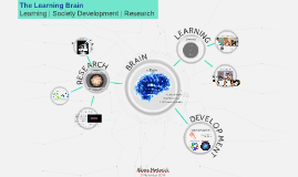 The Learning Brain: Learning | Society Development | Research